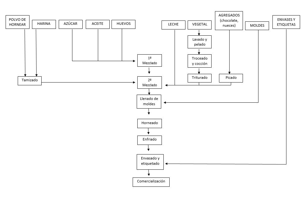 Asombroso Diagrama Del Sistema Circulatorio Etiquetado Modelo ...